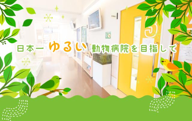 日本一ゆるい動物病院を目指して